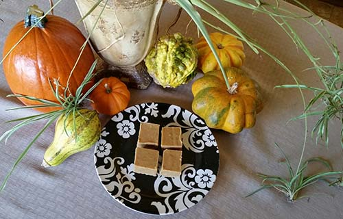 Fudge SpiderPl and gourds